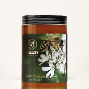 عسل گشنيز